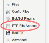 FTP File Access link