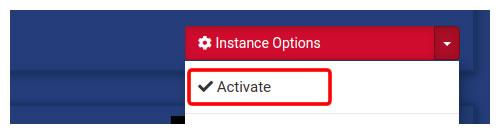 Click Activate Server Button