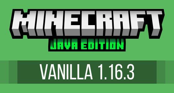 Minecraft Vanilla 1.16.3 Server Hosting