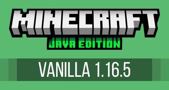 Minecraft Vanilla 1.16.5 Server Hosting