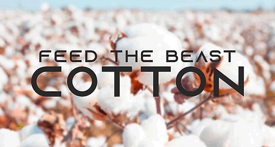 FTB Cotton Server Hosting
